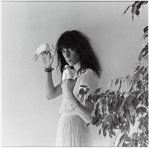 Patti Smith 1979 Robert Mapplethorpe 1946-1989 ARTIST ROOMS Acquired jointly with the National Galleries of Scotland through The d'Offay Donation with assistance from the National Heritage Memorial Fund and the Art Fund 2008 http://www.tate.org.uk/art/work/AR00495